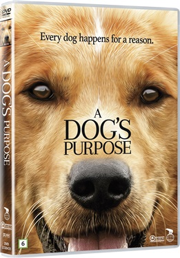 A dogs purpose (beg dvd)