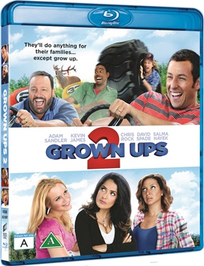 Grown Ups 2 (beg hyr blu-ray)