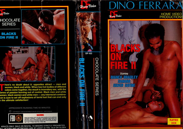 BLACKS ON FIRE 2 (VHS)