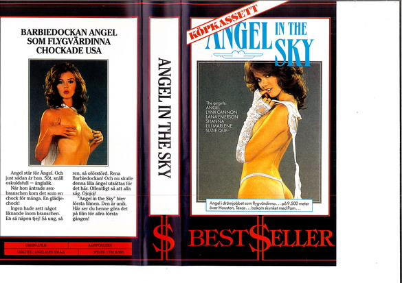 ANGEL IN THE SKY (VHS)