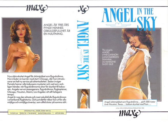 2004 ANGEL IN THE SKY (vhs)